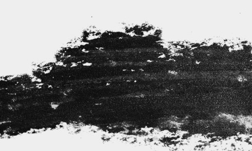 Lápiz Cejas Negro